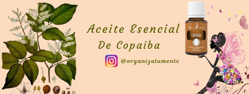 Web Copaiba